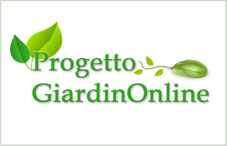 Maestri giardini progettazione giardino online for Progettazione on line