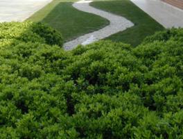 Galleria progetti giardino e realizzazione